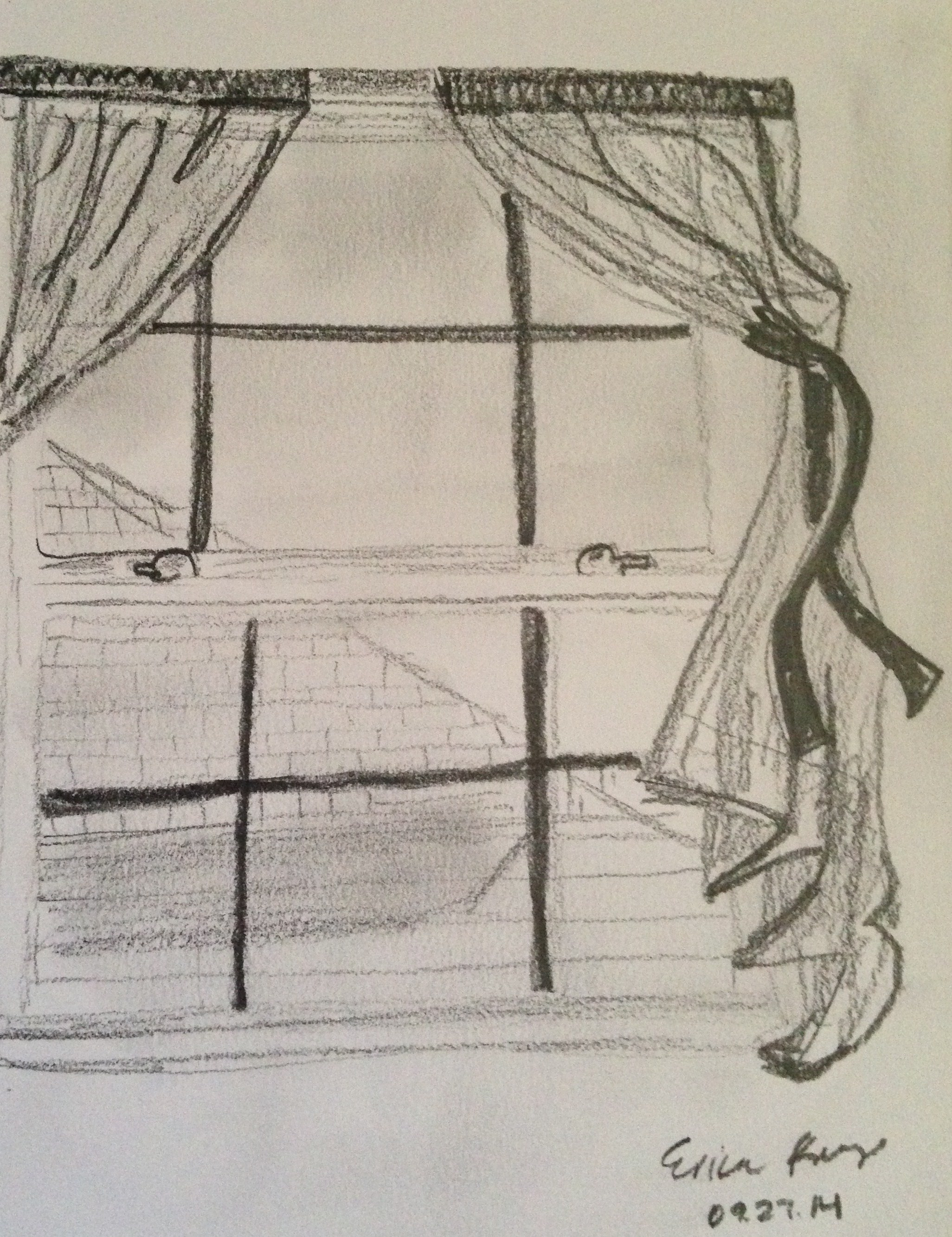 This is a photo of Wild Drawing On Window